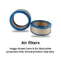 Air Filter WA1002